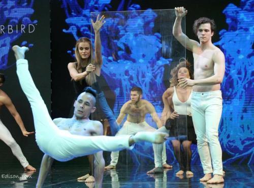 Divat show